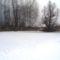 A_teli_kalapszigeti_dunaag_asvanyraro_2017_februar_03an_6_2026726_1074_s