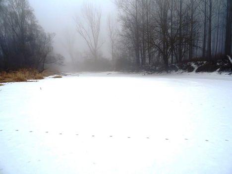 A téli Kalapszigeti Duna-ág, Ásványráró 2017. február 03.-án 7