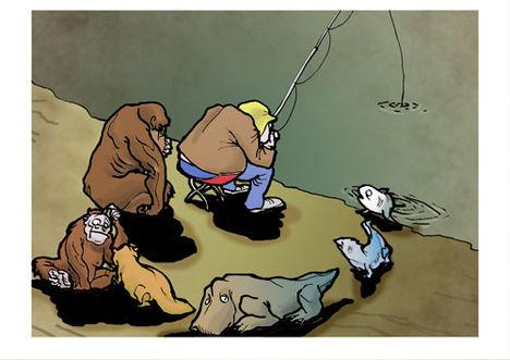 horgász evolúció