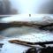 Vizeink jegén rágcsálnak a hódok, Szigetköz 2017. február 03.-án