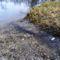 A Mosoni-Duna kisvizes időszakokban erőteljesen megcsapolja a térségi talajvizet Lickópusztánál, Mecsér 2017. február 10.-én 2