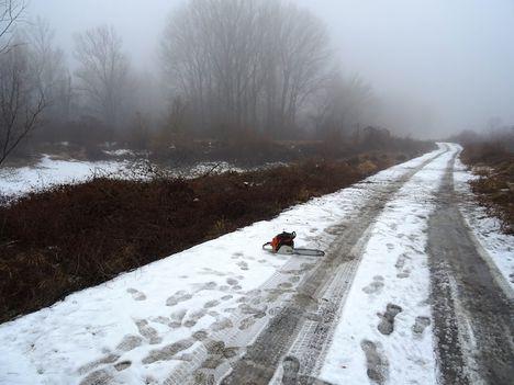 Füzesi töltőbukó a Duna folyam főmeder 1823 fkm-ben a jobb parton, Lipót 2017. február 03.-án 3