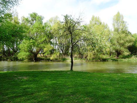 Mosoni-Duna folyó a Cvika Camping melletti szakaszon, Kimle 2017. április 11.-én 2