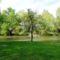Mosoniduna_folyo_a_cvika_camping_melletti_szakaszon_kimle_2017_aprilis_11en_2_2029726_1336_s