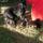 Locomotiv_star_b_betus_alom_3-001_2020273_4160_t