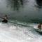 Vadkacsák a Szigetközben, jégen állva, 2017. január 25.-én