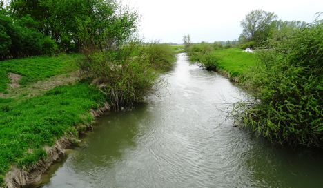 Lajta (Leitha) folyó főmeder Nickelsdorf térségében, 2017. április 22.-én 3
