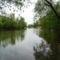 Tavasz a Mosoni-Duna parton, Halászi Duna sor 2017. április 14.-én 1
