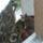 Bagoly_az_erkelyen-001_232116_16464_t