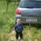 Erik + kocsi