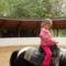 Nellike a debreceni élmény parkba járt.