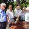 Nyugdijasklubok és Idősek Életet az éveknek Budapesti Szervezet klubjainak tevékenysége 6