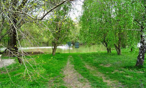 Tavasz a Mosoni-Duna parton, Halászi Duna sor 2017. április 14.-én