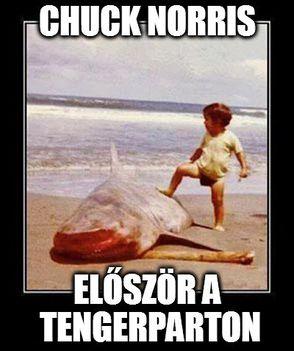 chuck-elso-napja-a-tengerparton