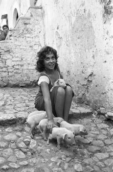 Gina Lollobrigida és a kismalacok