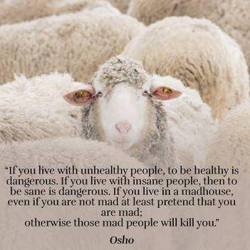 """""""Ha nem egészséges emberekkel élsz együtt, akkor"""