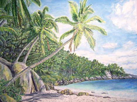Trópusi nyár