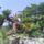 Trsteno_arboretum-001_2038500_3403_t