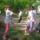Majorokiak a Wittmann parkért