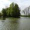 Mosoni-Duna folyó a Cvika Camping melletti szakaszon a jobb parti Cvika-ág alatt, Kimle 2017. április 11.-én 1
