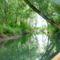 A Mosoni-Duna Mogyoroskerti mellékága, Mecsér 2016. július 26.-án 2