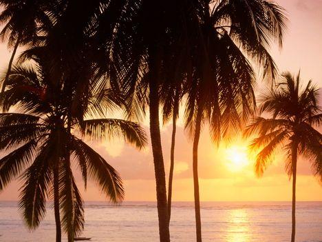 East_Coast_of_Zanzibar,_Tanzania