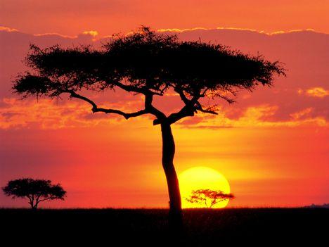 Masai_Mara_Game_Reserve_at_Sunset,_Kenya