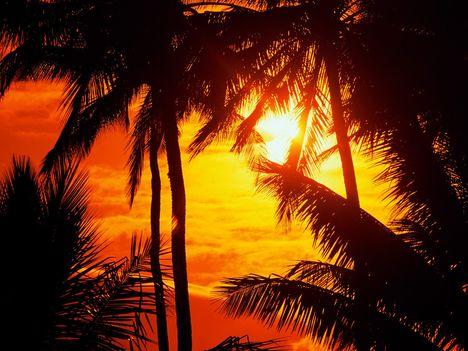 Maui_Sunset