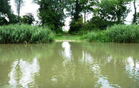 Mosoni-Duna bal partja, a Máriakálnok belterülete melletti szakaszon, 2017. július 25.-én 5