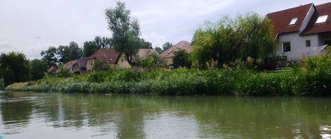 Mosoni-Duna jobb part a Mosonmagyaróvár, Rév utca mögötti szakaszon, 2017. július 25.-én 3