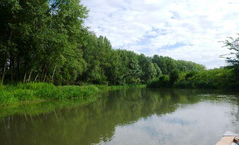 Mosoni-Duna Vámkerék-szigeti mellékága, Hédervár 2017. július 26.-án