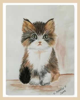 Micus cica (kisunokámnak)