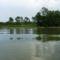 Ásványi fenékküszöb a felvízről nézve, Ásványráró 2017. május 15.-én 3