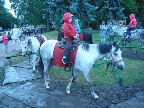 barátkoznak a lóval a kicsik