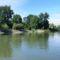 Mosoni-Duna bal part a Magyarkimle, Vízpart utca melletti szakaszon, Kimle 2017. június 25.-én 1
