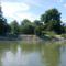 Mosoni-Duna bal part a Magyarkimle, Vízpart utca melletti szakaszon, Kimle 2017. június 25.-én 3