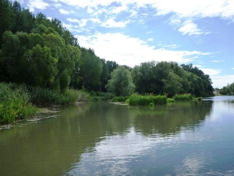 Mosoni-Duna Mecsér község belterülete feletti szakaszon, 2017. július 26.-án 4