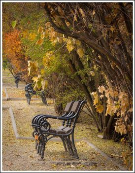 Őszi séta a parkban...Dáma Lovag Erdős Anna verse: