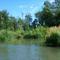 Magyarkimlei vizes élőhely a Mosoni-Duna jobb partján, 2017. július 25.-én 1