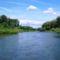 Magyarkimlei vizes élőhely a Mosoni-Duna jobb partján, 2017. július 25.-én 2