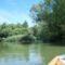 Mosoni-Duna a Cvika mellékágak feletti szakaszon, Kimle 2017 július 25 (3)