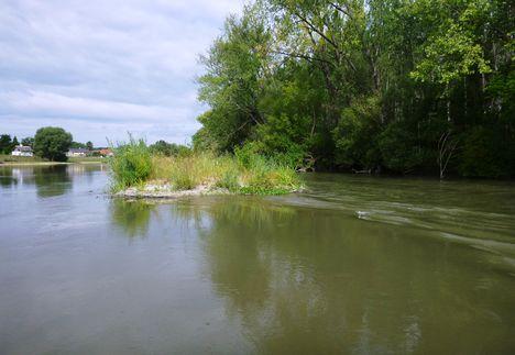 Mosoni-Duna folyó Mecsérnél, a Mogyoróskerti mellékág alsó végében, 2017. július 26.-án