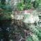 Oroszvár (Rusovce) a Lónyay kastély kertjében húzódó csatorna, 2017. szeptember 03.-án 1
