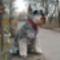 5 éves Mazsola 008