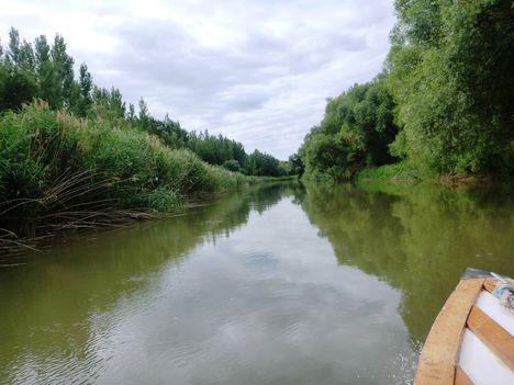 Mosoni-Duna  Sztari sziget melletti mellékág, Kimle. 2017 július 26.-én