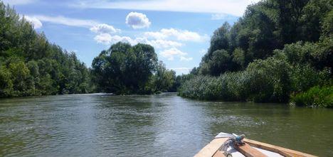 Mosoni-Duna a Cseregle-sziget feletti szakaszon, Kimle 2017. július 25.-én