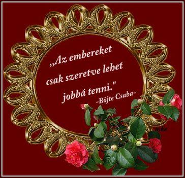 Wass Albert: INTELEM