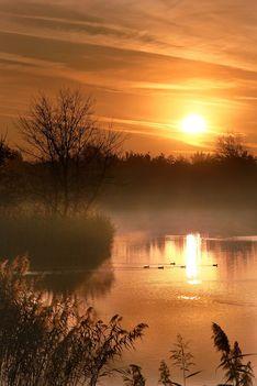 Esti fények Báger tó felett..:Dáma Lovag Erdős Anna verse: