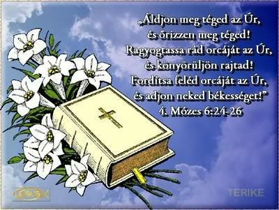 Szentes 5