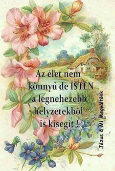 Szentes 6